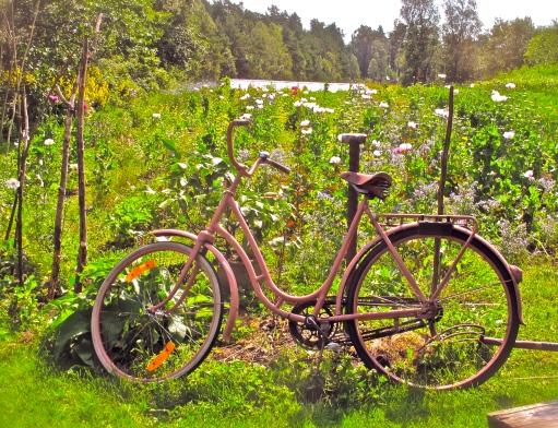 cykeln-15
