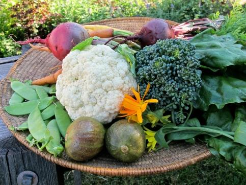 grönsaksfat